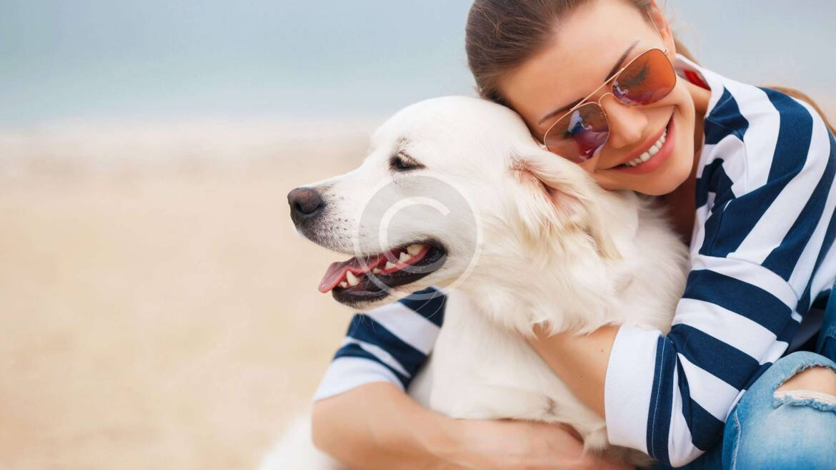 Is That Human Food Safe for Dogs?