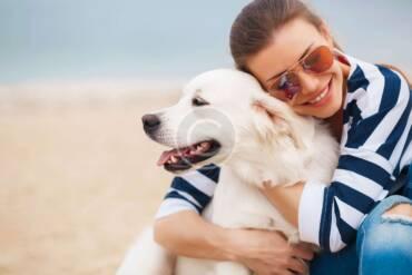 Camping con tu perro